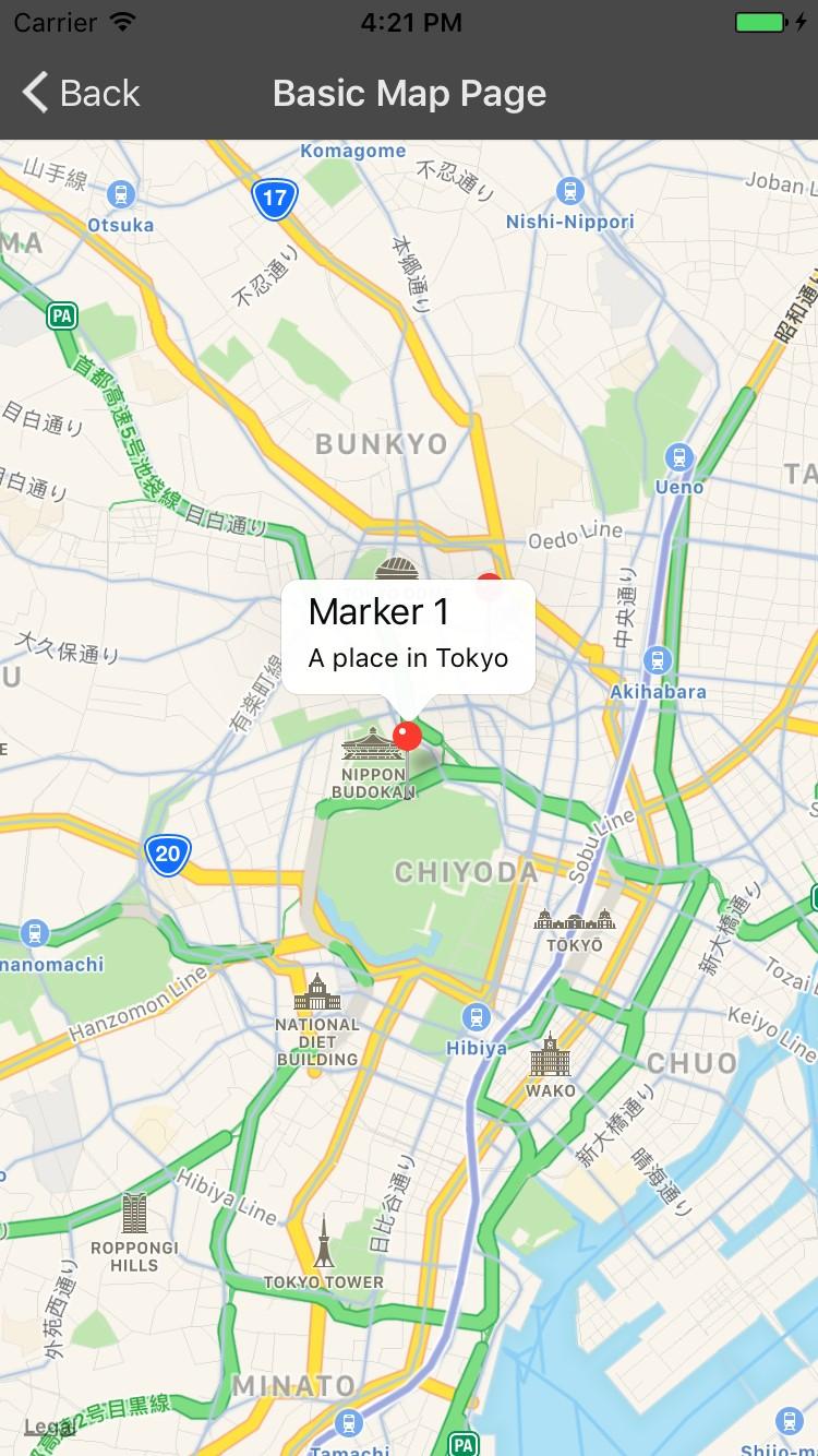 RN Maps Demo
