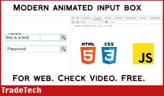 Modern Web Input Box for Forms